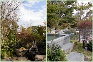 杜の湯リゾート3.jpg