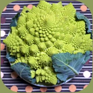 野菜のロマネスコ.JPG